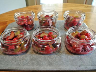 Rhubarb-Raspberry-Crisp-12