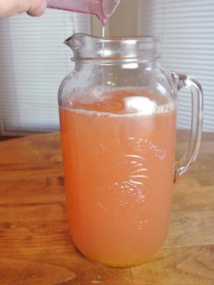 Grapefruit-Margarita-Sorbet-7