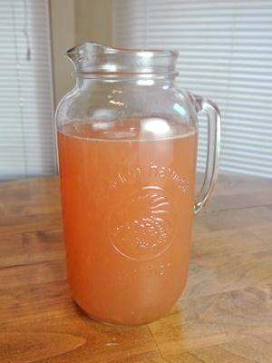 Grapefruit-Margarita-Sorbet-8