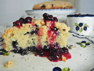 Blueberry-Cream-Cheese-Crumb-Cake-with-Blueberry-Sauce-1