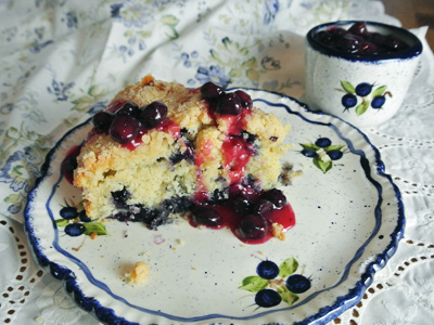 Blueberry-Cream-Cheese-Crumb-Cake-with-Blueberry-Sauce-2