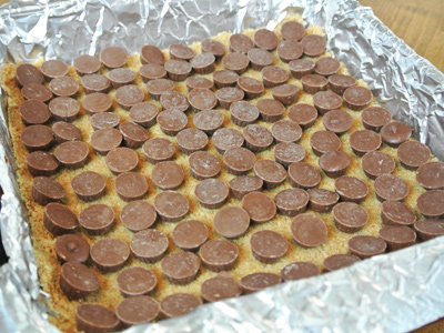 Cheesecake-Bites-12