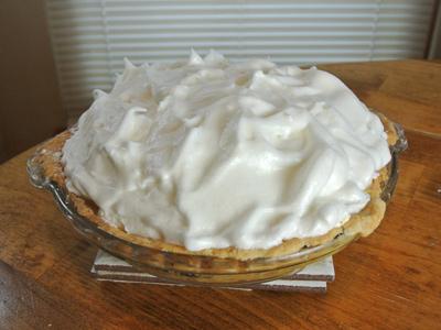 Buttermilk-Pie-16