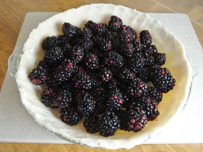 blackberry-pie-9